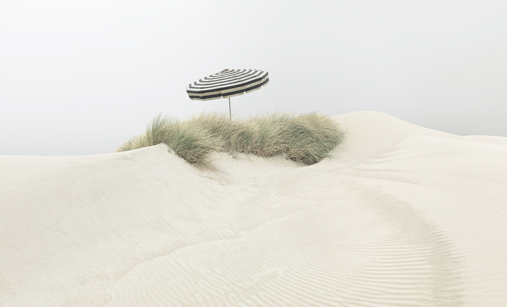 Umbrella on Dune